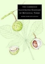 Cambridge Illustrated Glossary of Botanical Terms, The by: Hickey, Michael - Product Image