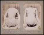 Crime Album Stories: Paris 18861902 [ILLUSTRATED]by: Parry, Eugenia - Product Image