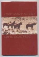 How Many Horses (A Raccoon book)by: Romtvedt, David - Product Image