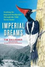 Imperial Dreams: Tracking the Imperial Woodpecker Through the Wild Sierra MadreGallagher, Tim - Product Image