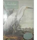 John James Audubon: The Watercolors for the Birds of America,by: Blaugrund (ed), Annette, Theodore E. Stebbens, Jr.,  - Product Image