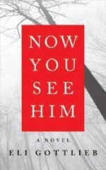 Now You See Him: A Novelby: Gottlieb, Eli - Product Image