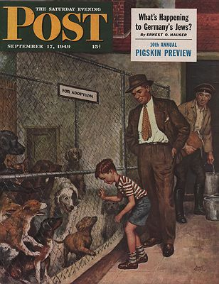 ORIG VINTAGE MAGAZINE COVER/ SATURDAY EVENING POST - SEPTEMBER 17 1949illustrator- Amos  Sewell - Product Image