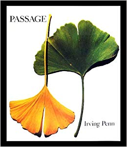 Passage: A Work Recordby: Penn, Irving - Product Image