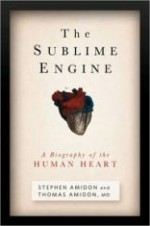 Sublime Engine, Theby: Amidon, Stephen & Thomas - Product Image