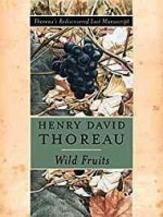 Wild Fruits: Thoreau's Rediscovered Last ManuscriptThoreau, Henry David, Illust. by: Abigail Rorer - Product Image